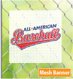 Mesh Outdoor Banners in DC