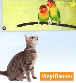 Vinyl Banner Printing In DC
